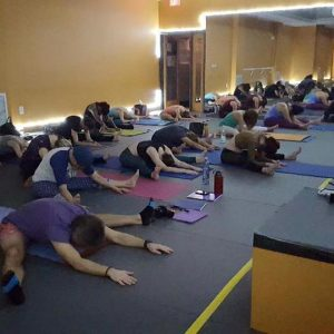 Yin Yoga Certification